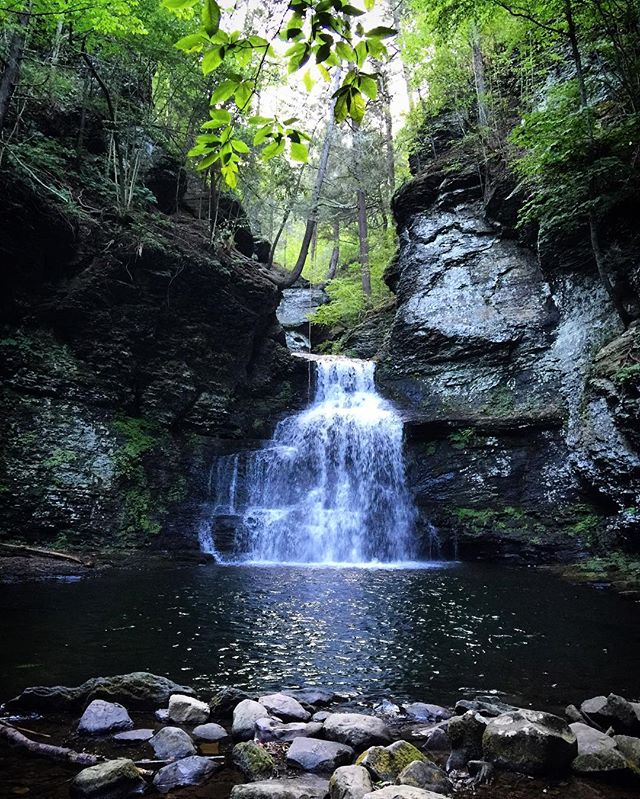 """""""Two roads diverged in a wood & I took the one less traveled by, and that has made all the difference."""" 🍃🌿🍃 #RobertFrost #Dingmanfalls #waterfall #forest #nature #summer #adventure #exploring #hike #pennsylvania"""