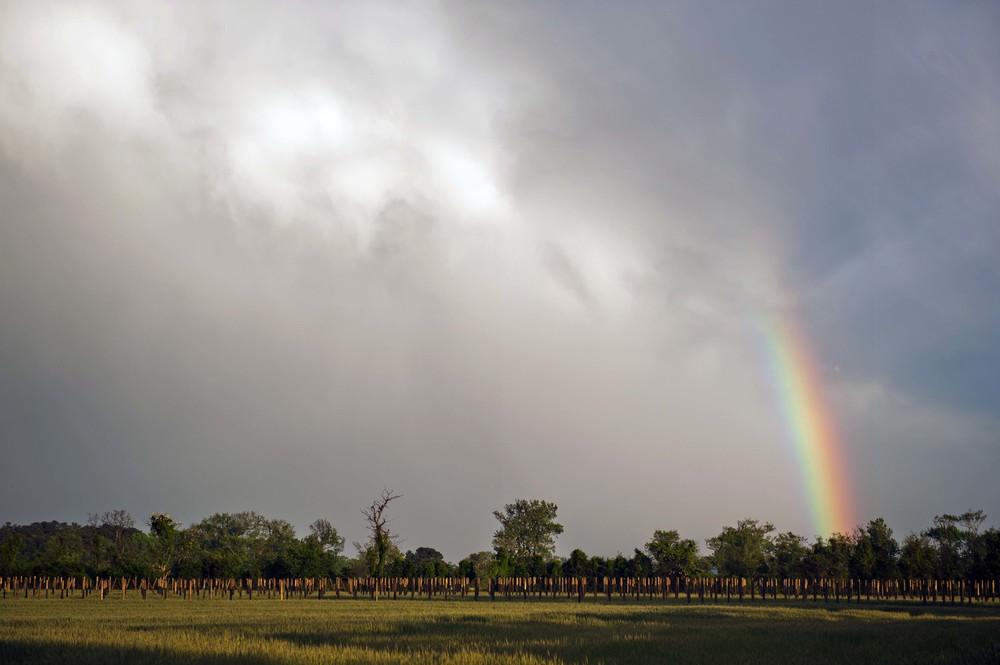 05072013_rainbow_043.jpg