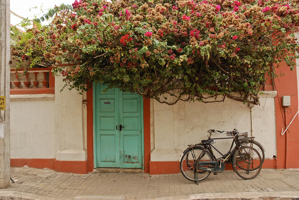 bikes-pondicherry.jpg