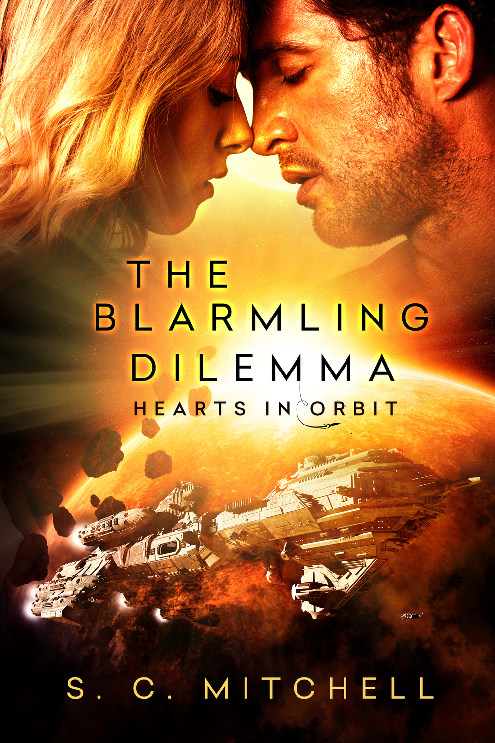 The Blarmling Dilemma by S. C. Mitchell