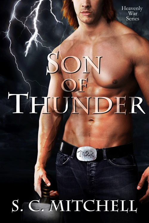 Son of Thunder by S.C. Mitchell