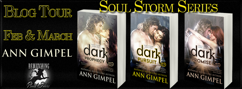 Storm Series by Ann Gimple