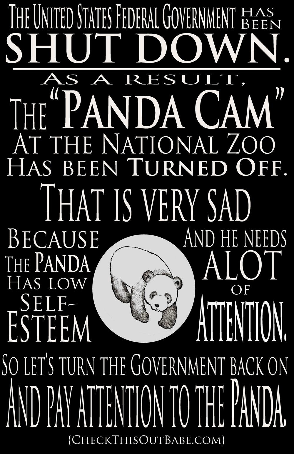 PandaCam.jpg