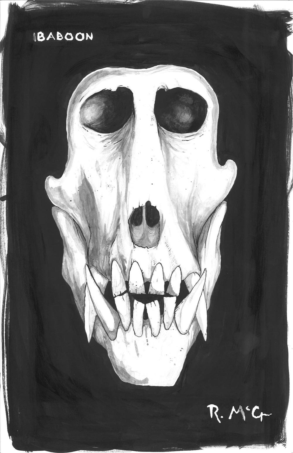 BabboonSkull.jpg