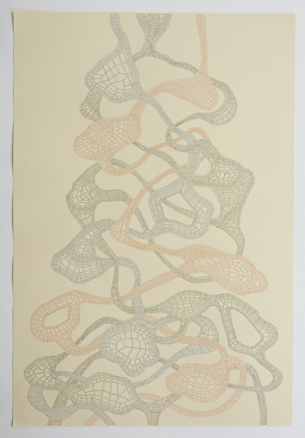 Untitled (Tied up), 2013
