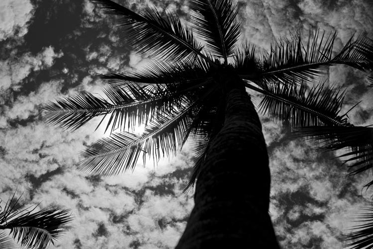 Maui_July_2015_005.jpg