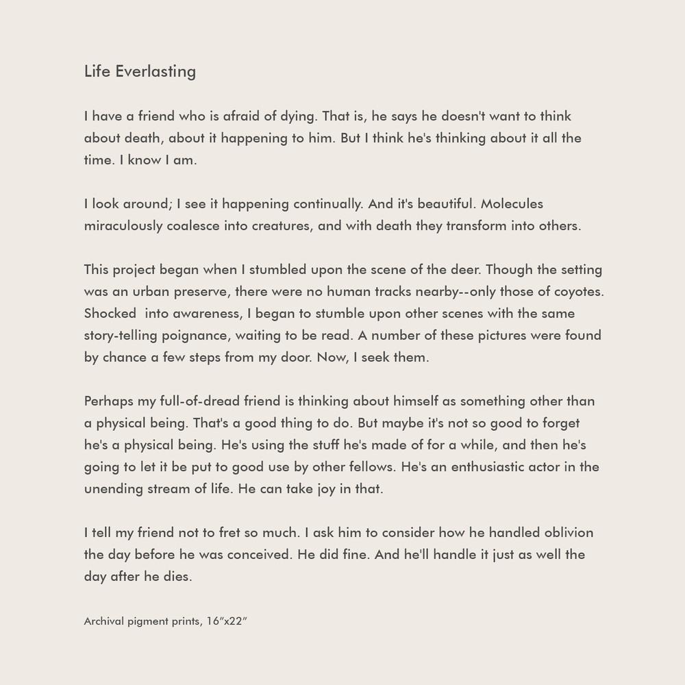life-everlasting-text2.jpg