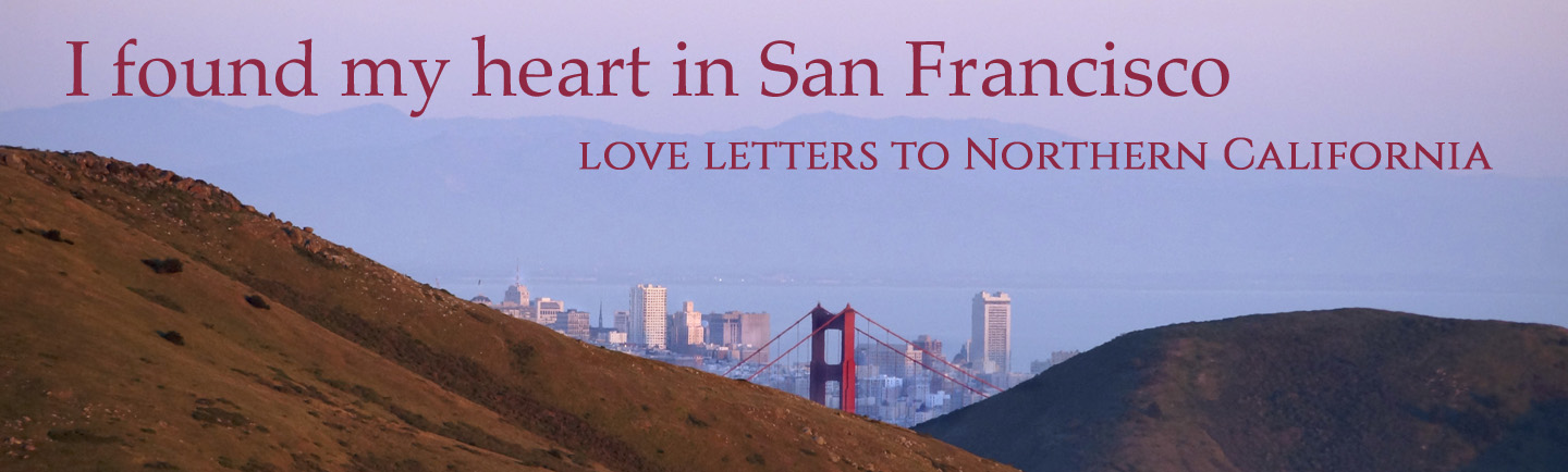 I Found My Heart in San Francisco