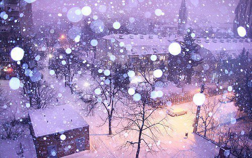 nature-pretty-snow-street-weather-Favim.com-357532.jpg