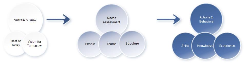 Process to bring your organization's strategic plans and vision statements to life.