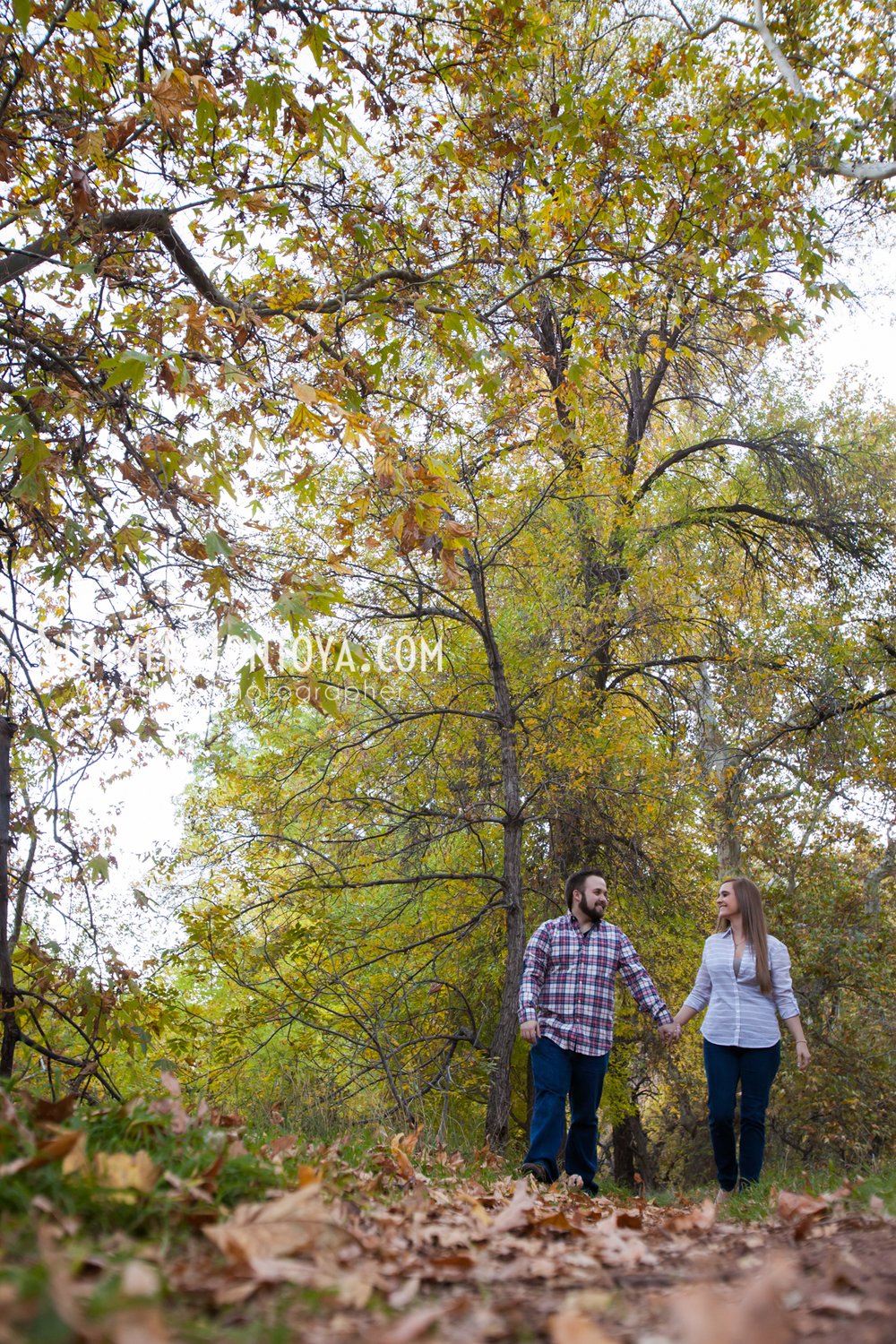 oak-creek-engagement