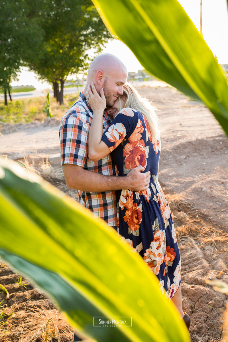 Gilbert engagment photos in a cornfield