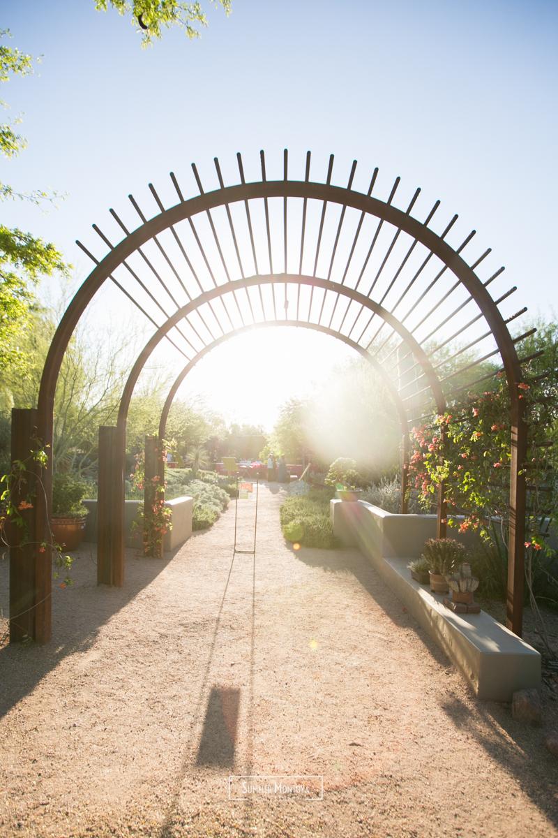weding-desert-botanical-gardens (9 of 13).jpg