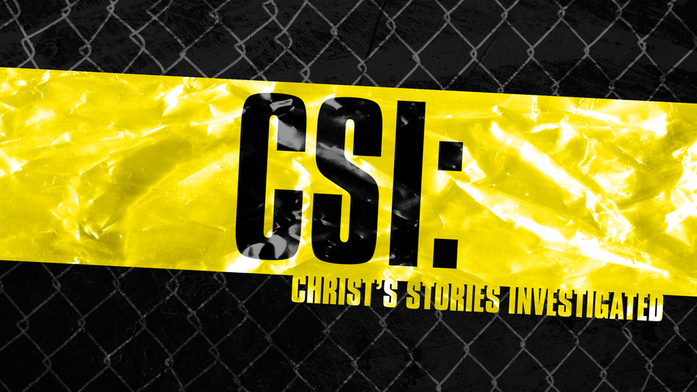 Christ's Stories Investigated
