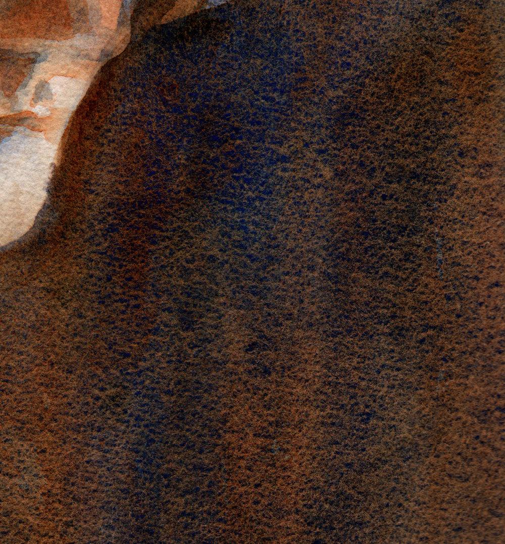 louise detail
