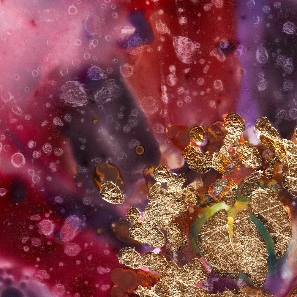 opium-poppy-detail3.jpg