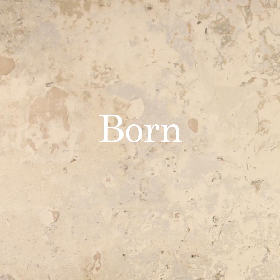 PORTADA BORN 2.jpg