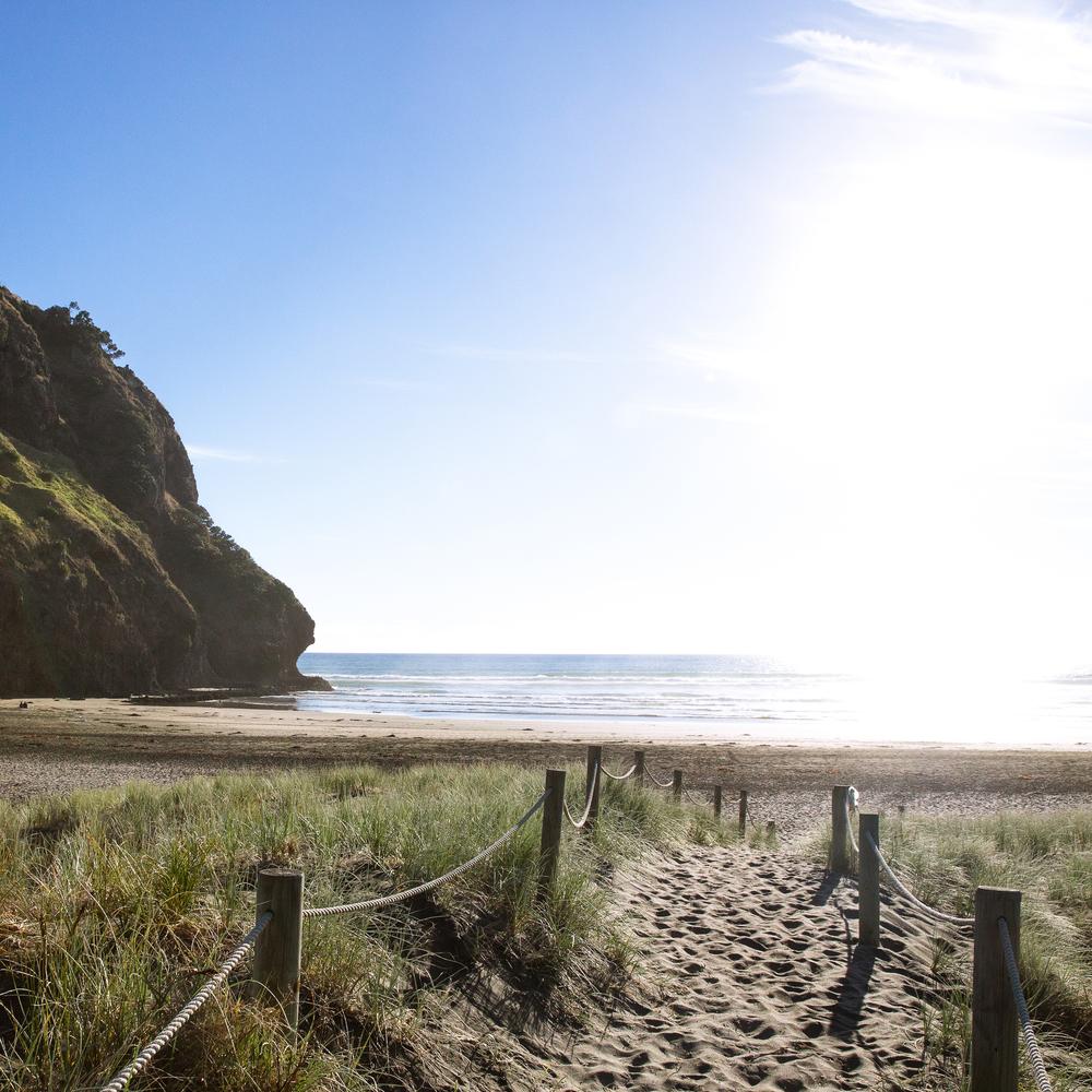 NZ_09_ig.jpg