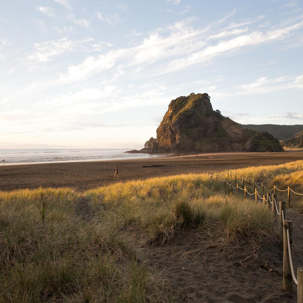 NZ_10_ig.jpg