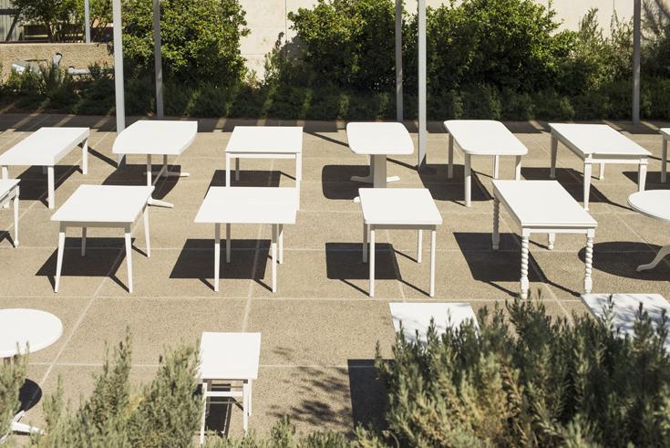 Seder20.jpg