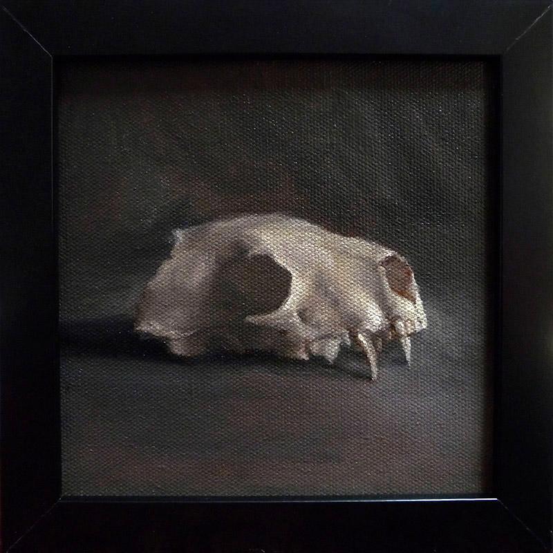 dawndundundun-weasel-skull.jpg