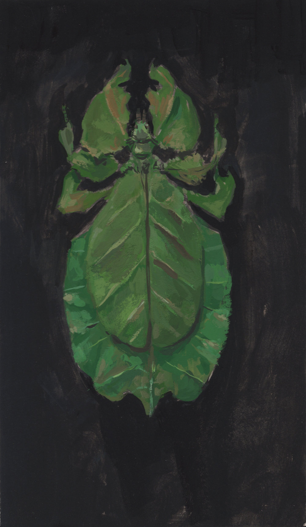 """Leaf Mantis"" Gouache on Illustration Board"