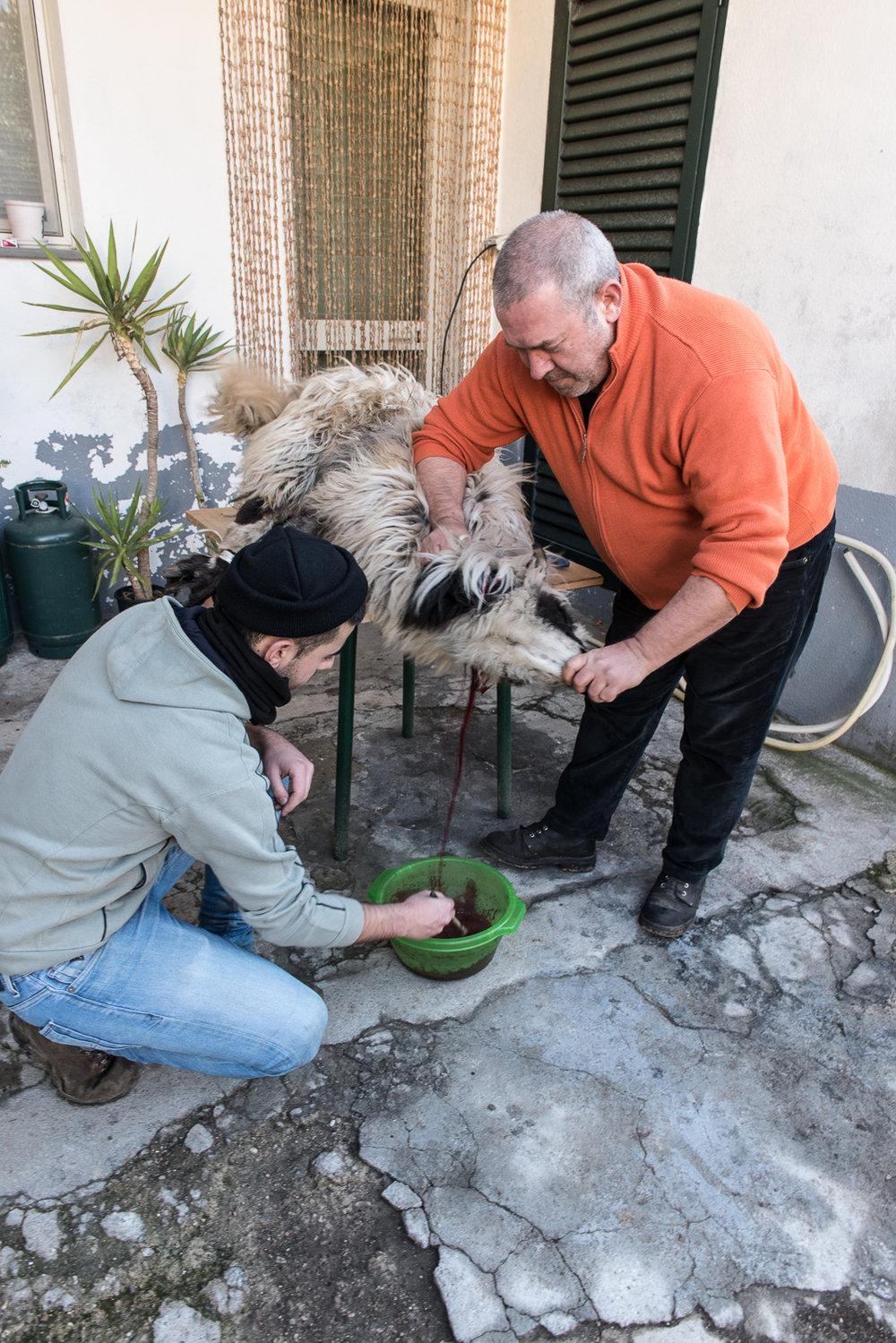 2018_Jan_Sardinia_StAntonio_0660.jpg
