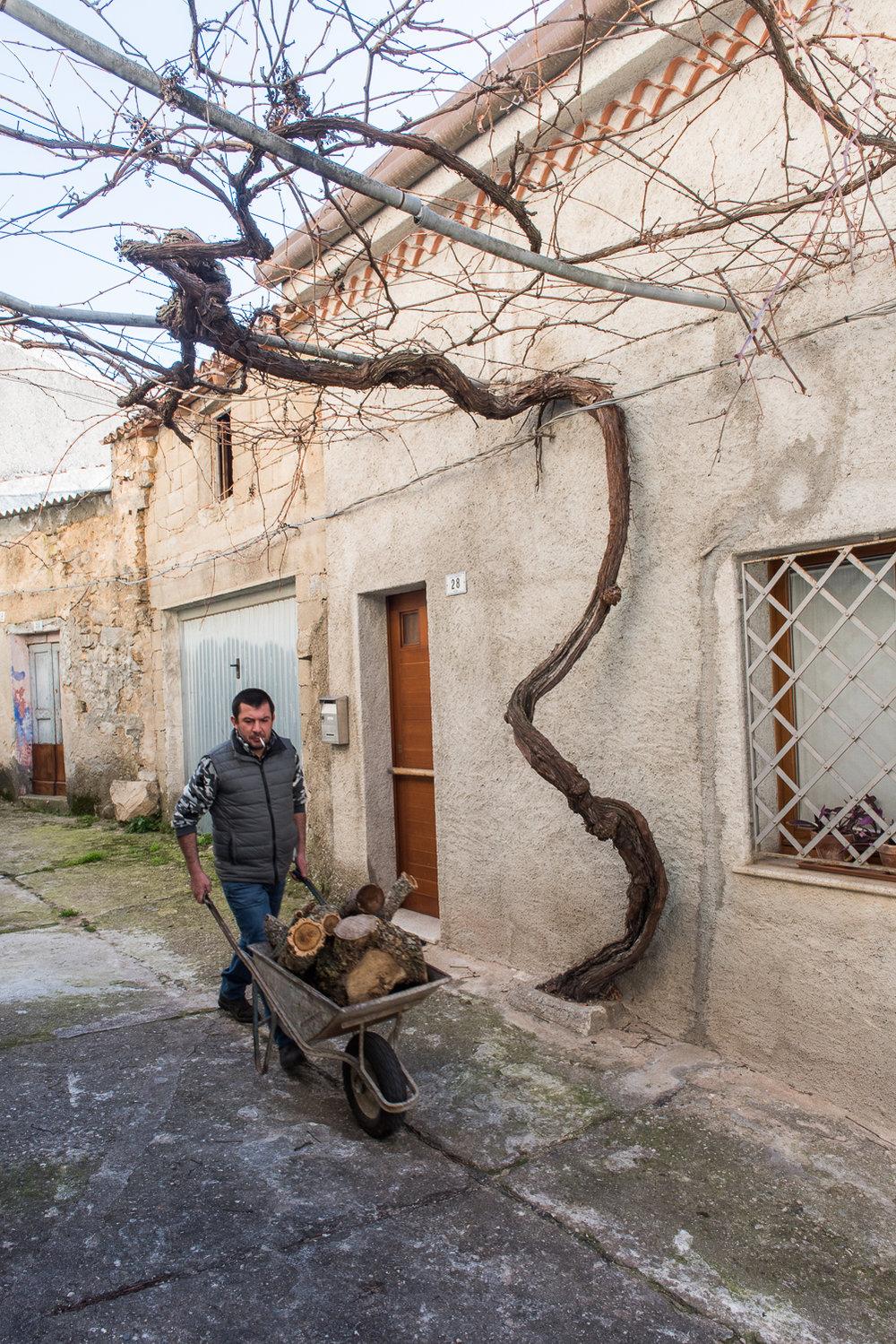 2018_Jan_Sardinia_StAntonio_2459.jpg