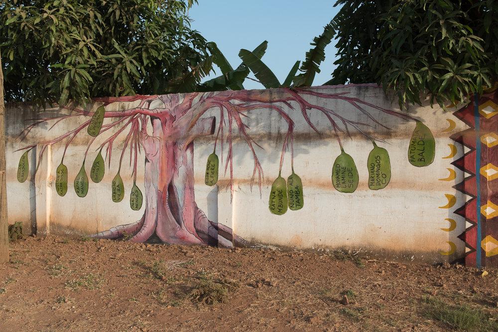 2018_02_Bissau_Environmental_0141.jpg