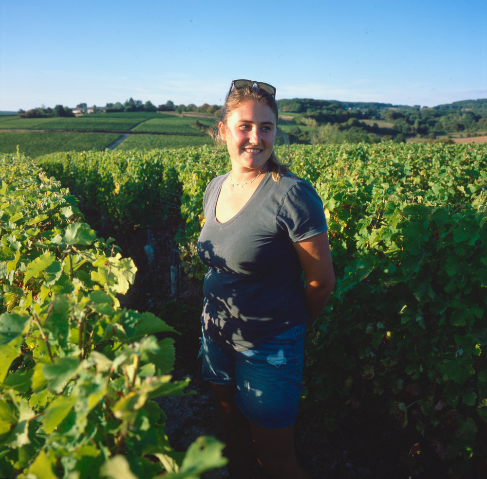 2018_Sept_Vendanges_Minchin_2977.jpg