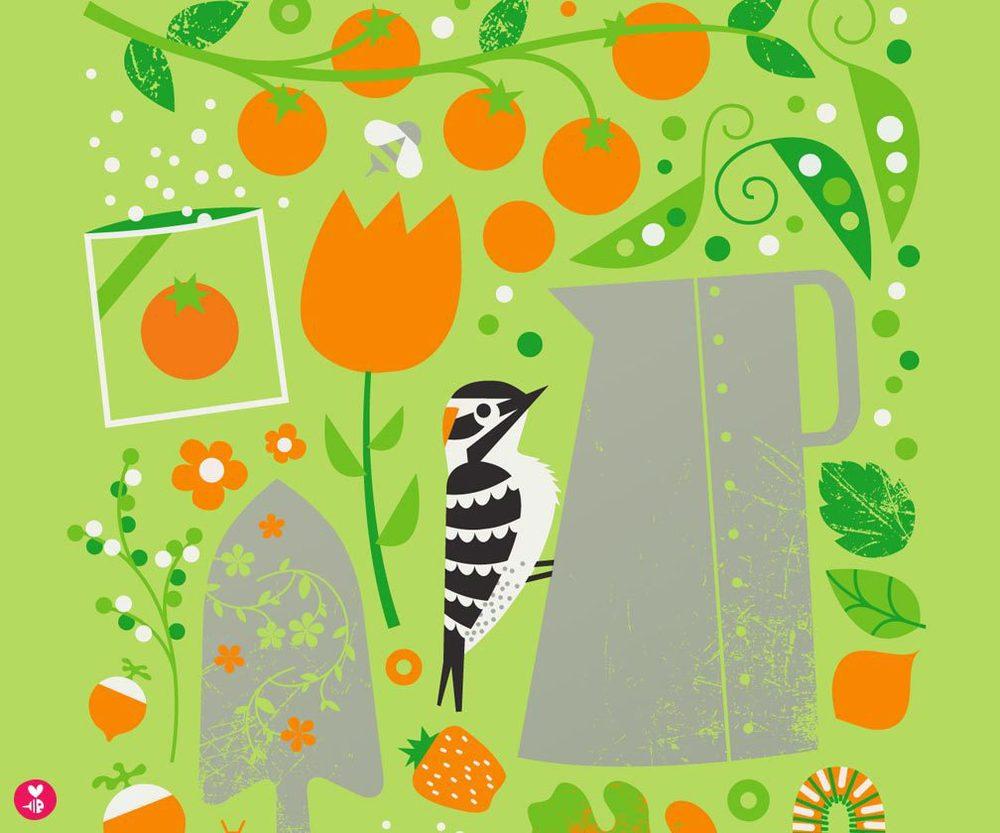 garden woodpecker