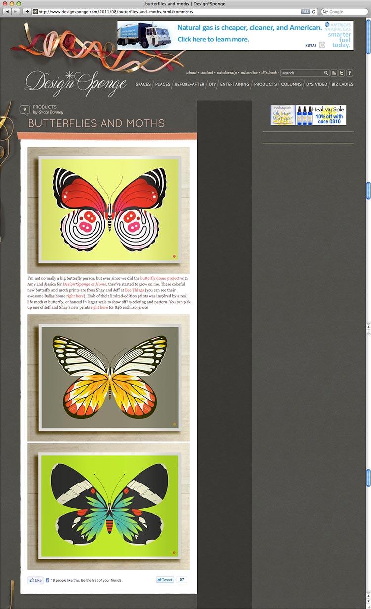 design_sponge_image.jpg