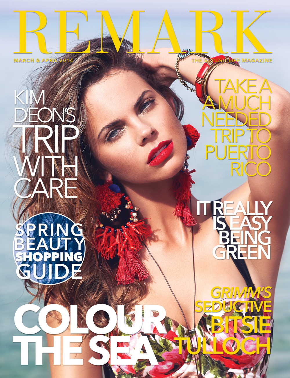 Remark Magazine March /April 2014