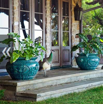 How wonderful for a set of ceramic pots...looks great against the green