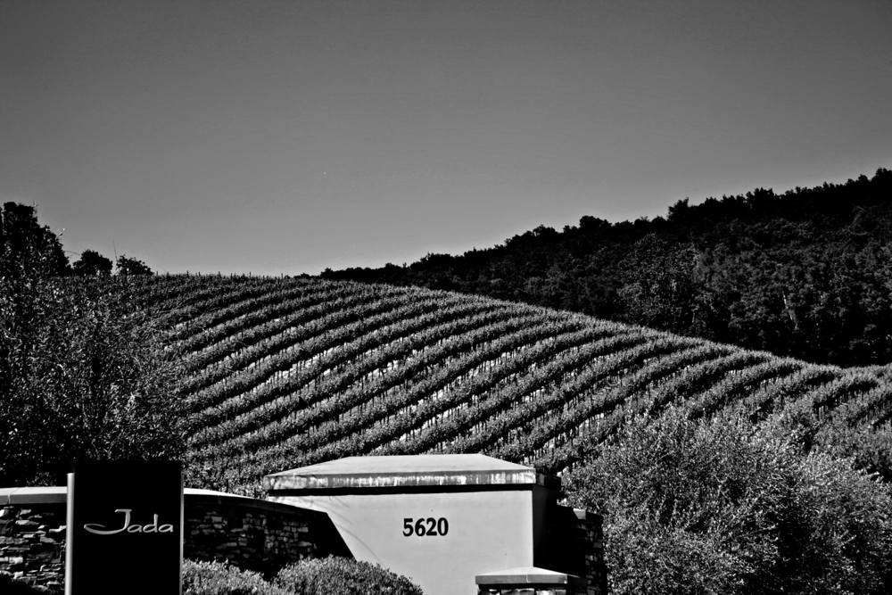 Originally barley, Jada's 65-acre premium estate vineyard is comprised of 11 different Rhone & Bordeaux varieties of grapes & 19 different clones.