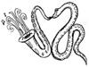 snake w sax_100.jpg