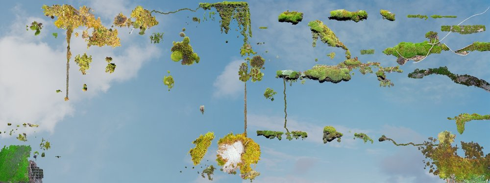 MossMap_40x86inches_Speakman.jpg