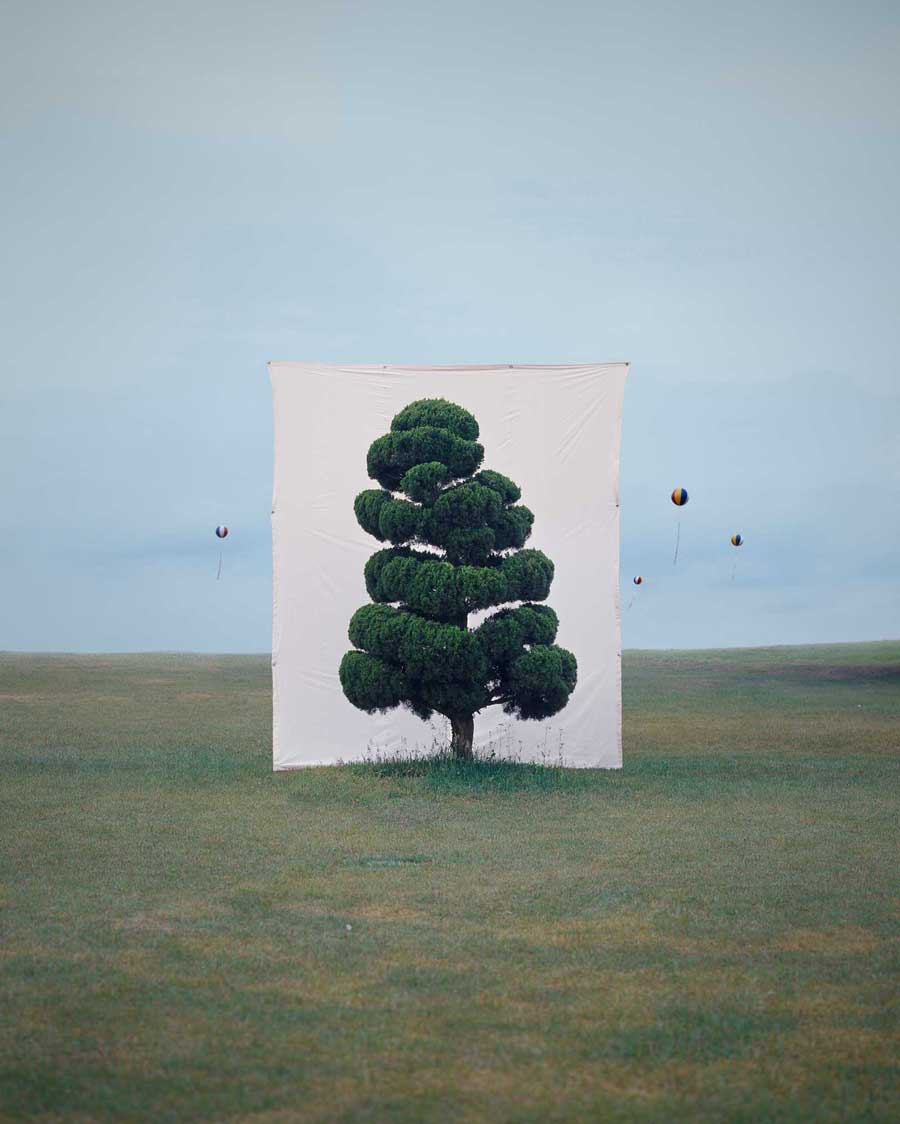 Myoung Ho Lee ,    Tree #2 , 2006 © Myoung Ho Lee, Courtesy Yossi Milo Gallery, New York