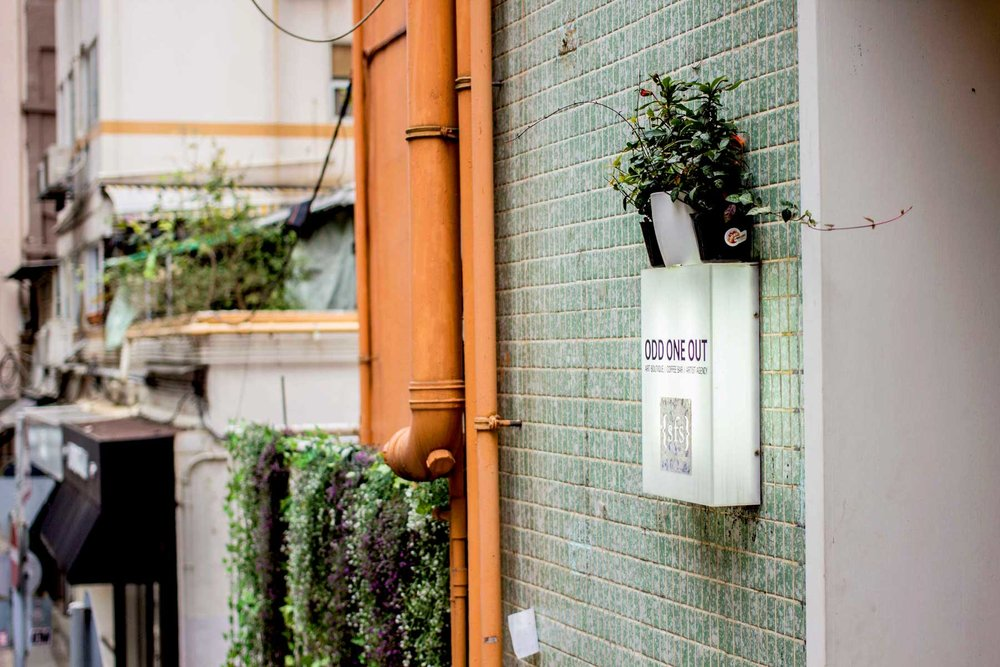 Odd One Out - A treasure trove of local art, zines and hand-made design, Odd One Out is a cool space tucked away in the Wan Chai precinct. Climbing a steep staircase, you'll spy the orange building with green tiles, draped in rebellious wild plants. Products here have a minimal, illustrative style with some representing different Hong Kong locations and abstractions. You'll find this the perfect spot to pick up a trip memento.14 St Francis Street, Wan Chai
