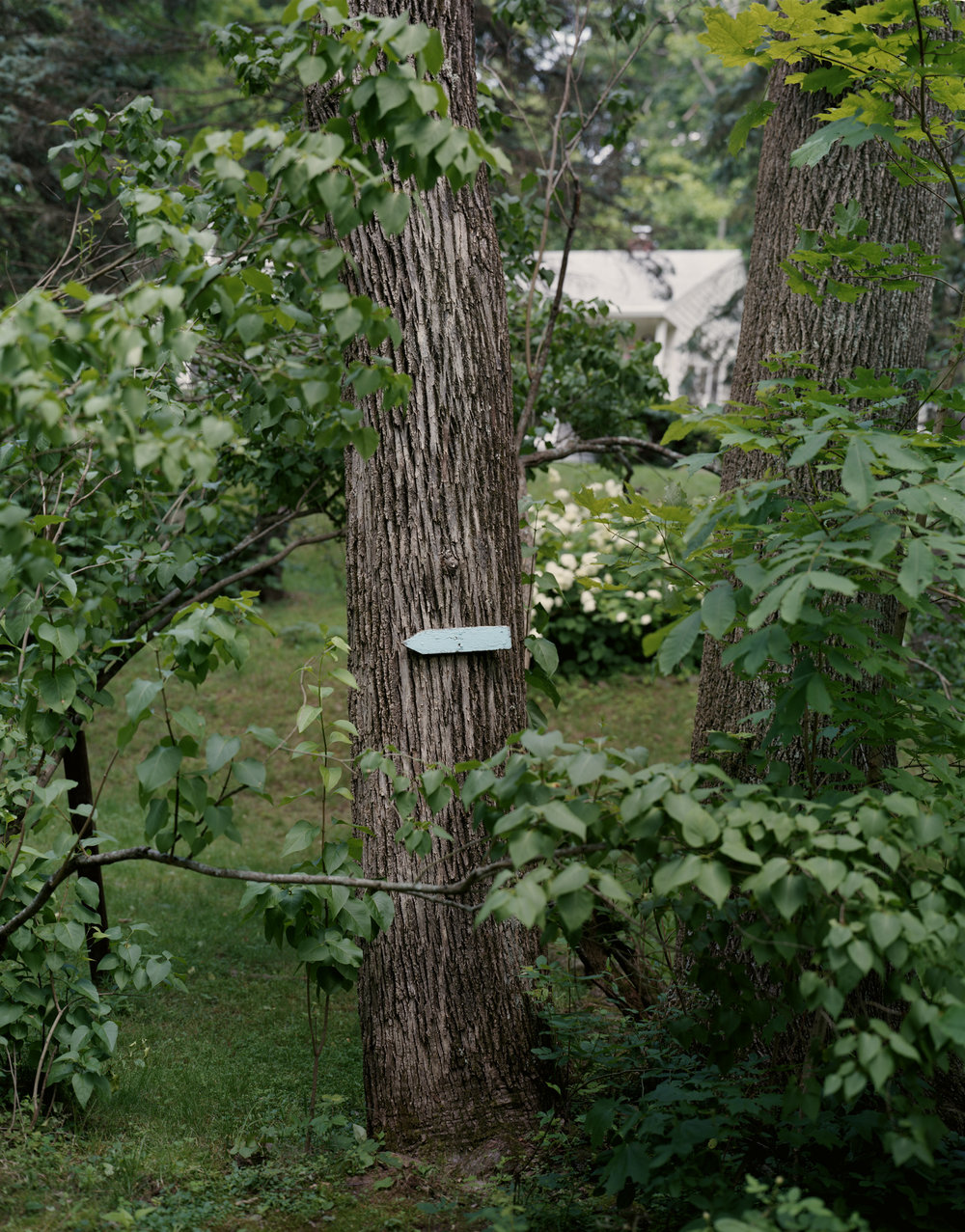 12-137 Blue arrow, trail marker, full from CS.jpg
