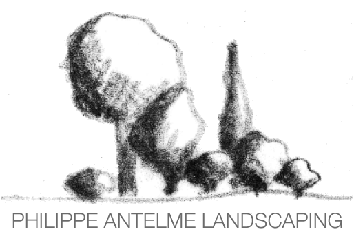Philippe Antelme Landscaping
