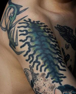 Auch eine Makrelenhaut ziert den Körper des Kriminalbiologen