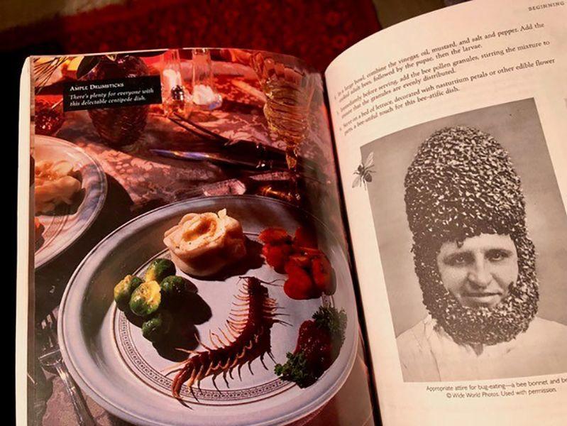 """Aus Dave Gordons Insekten-Kochbuch """"Eat-A-Bug Cookbook"""""""