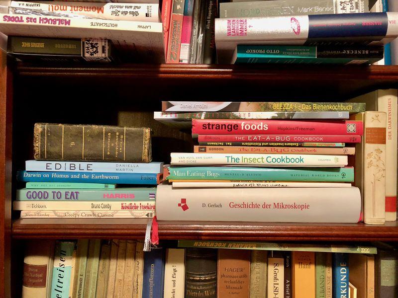 Insekten-Kochbücher im Buch-Regal von Mark