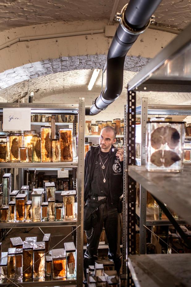 """Foto: Julian Roeder/OSTKREUZ: Dr. Mark Benecke, """"Herr der Maden"""" in der alten Kapelle der Charité in Berlin"""