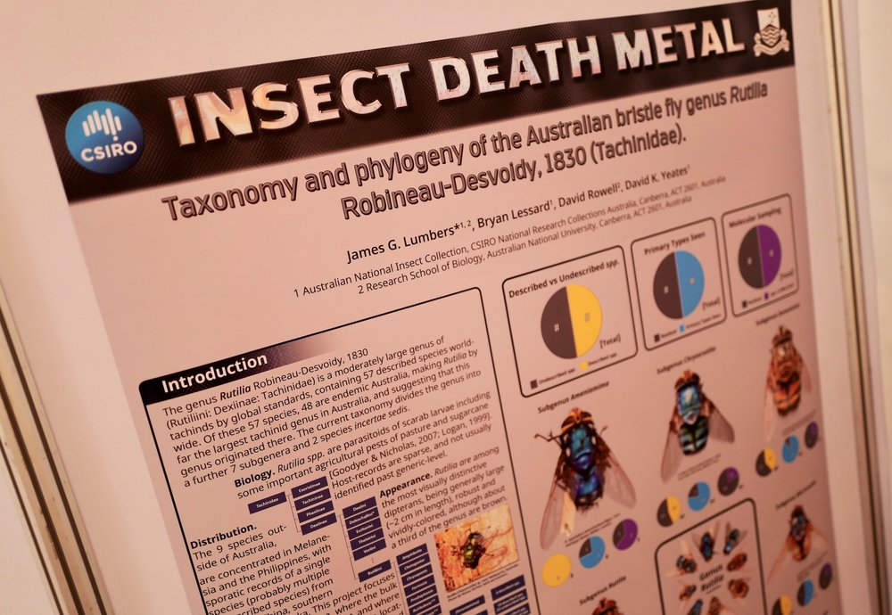mark_benecke_ICD9_dipterology_world_congress_windhoeck_namibia - 271.jpg