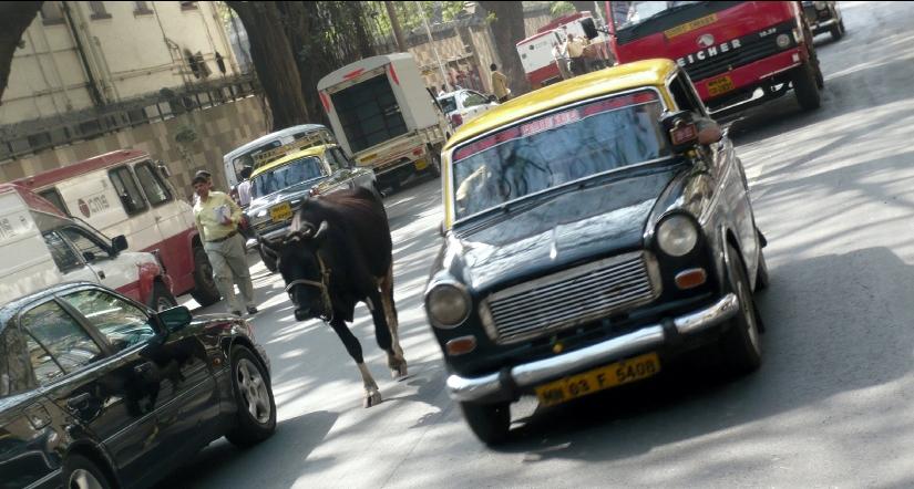 mark_benecke_indien_rechtsmedizin_kongress_mumbai_19.jpg