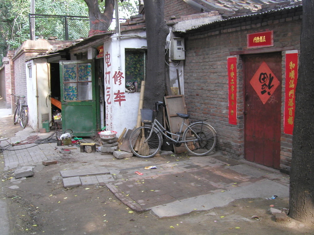 mark_benecke_china - 169.jpg
