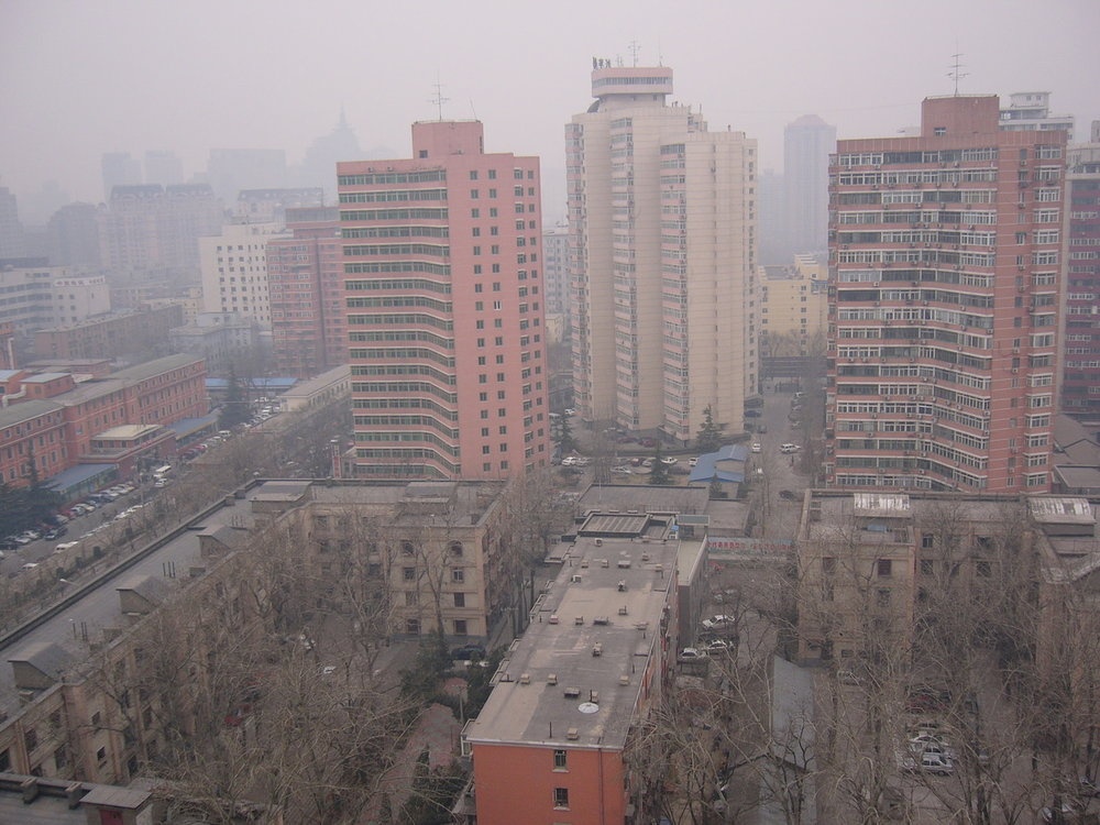 mark_benecke_china - 391.jpg