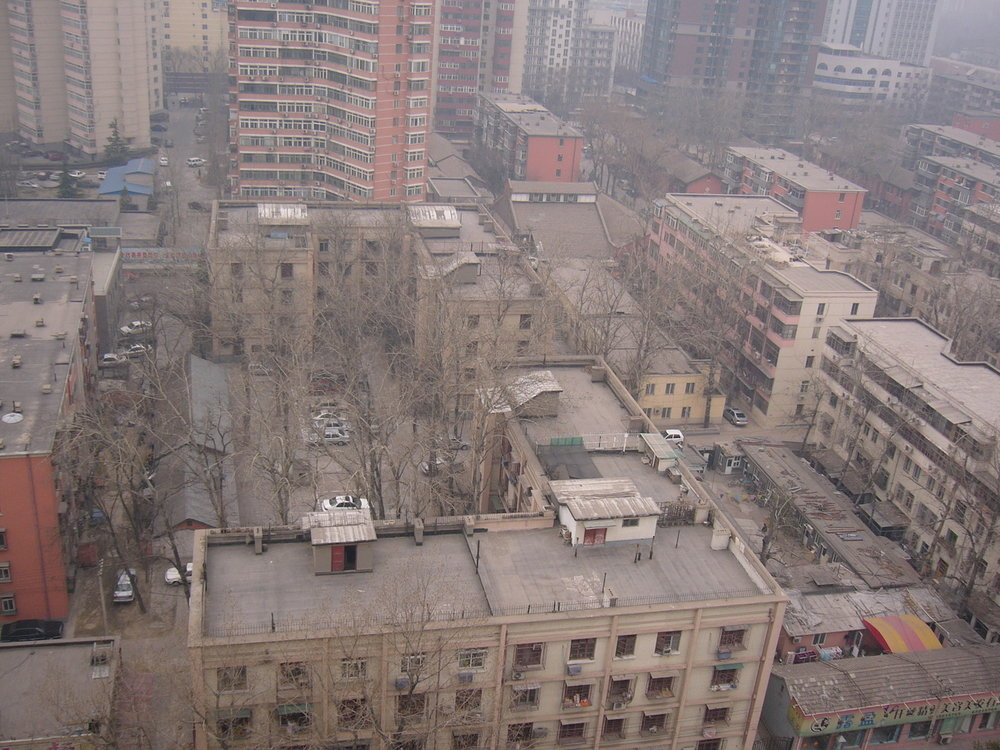 mark_benecke_china - 394.jpg